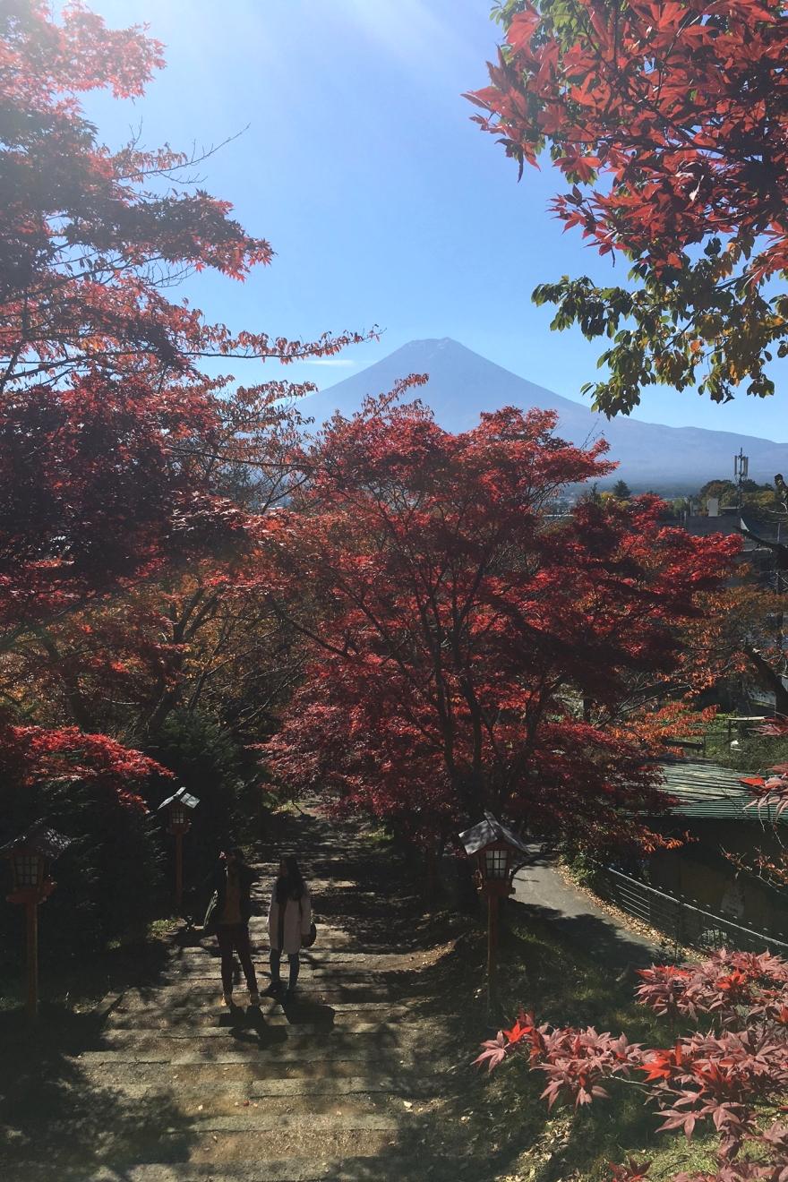 新倉富士浅間神社参道のもみじと富士山