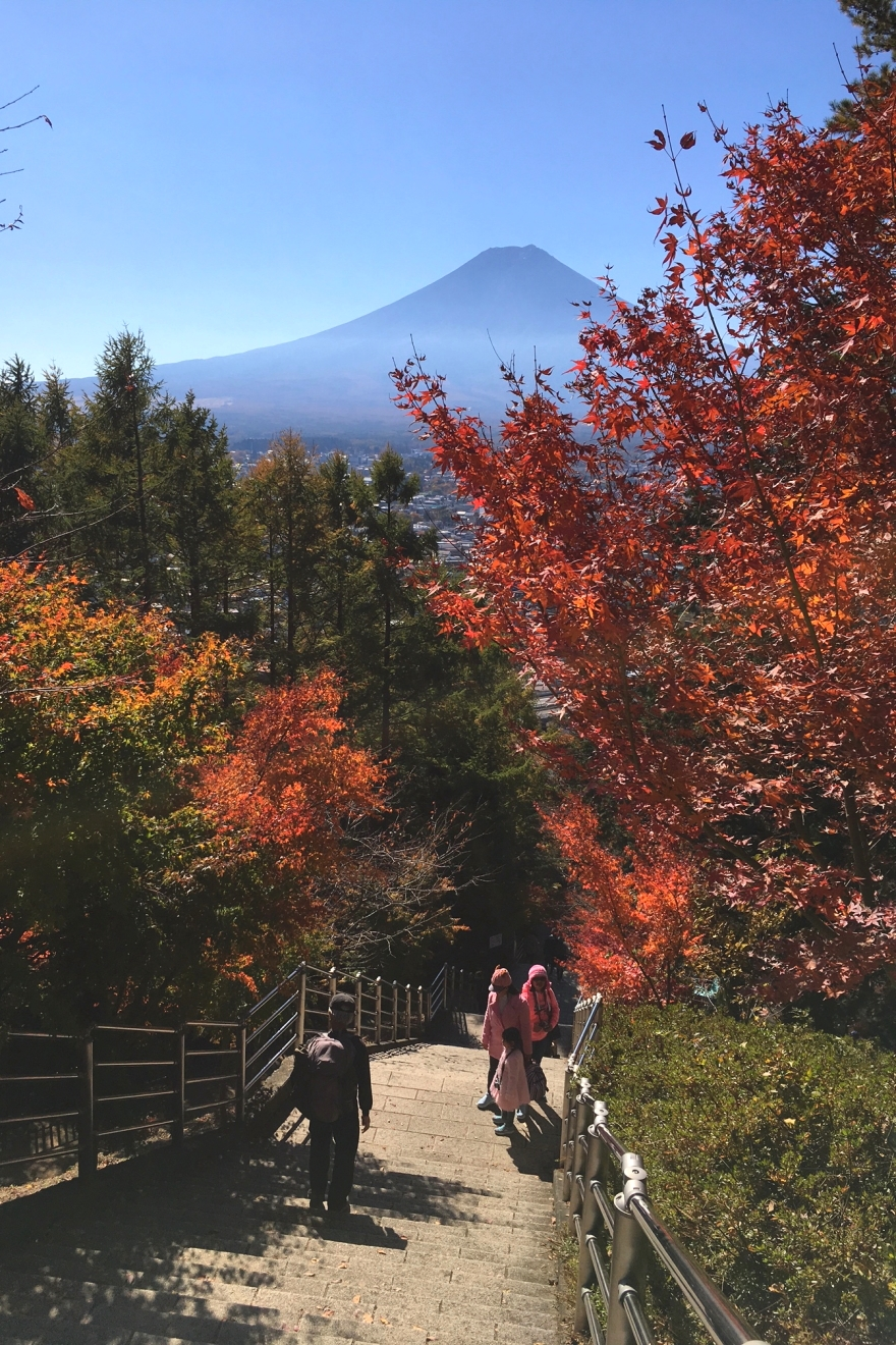 忠霊塔へ続く階段からの富士山