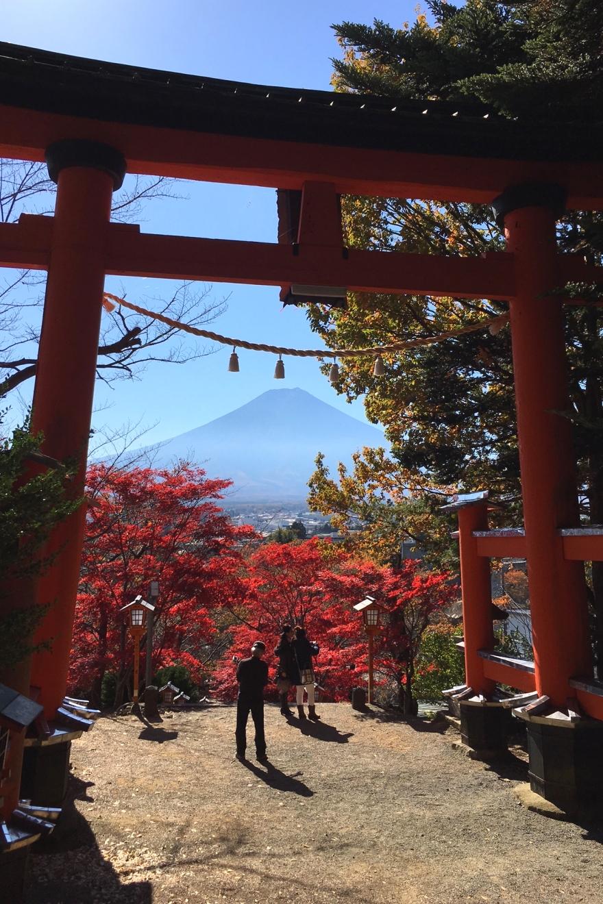 新倉富士浅間神社大鳥居から望む富士山