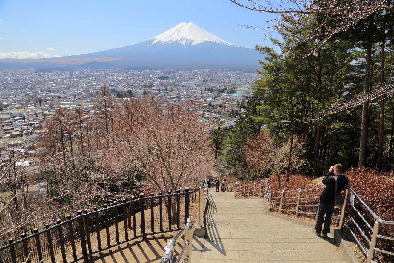 さくや階段からの富士山