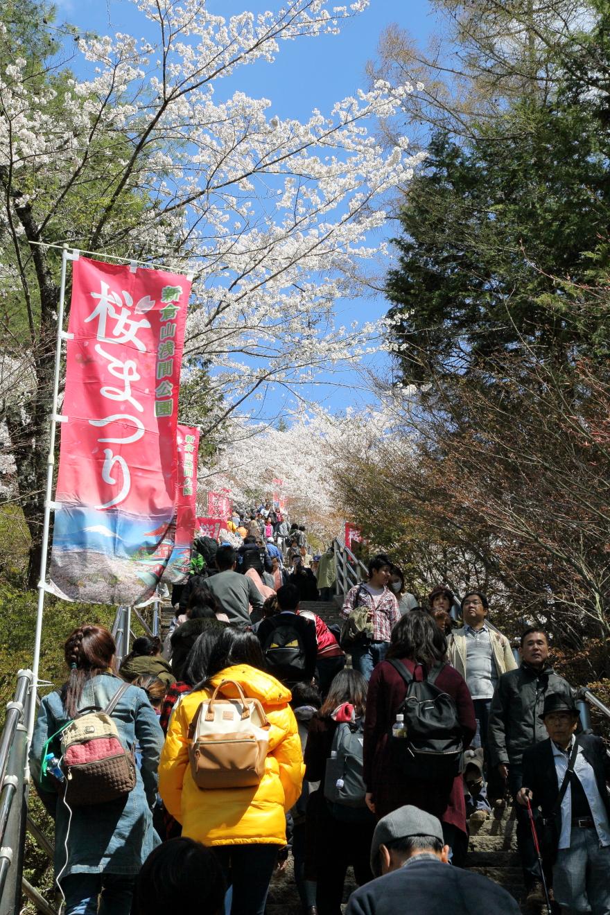 新倉山浅間公園桜まつり開催中の咲くや姫階段