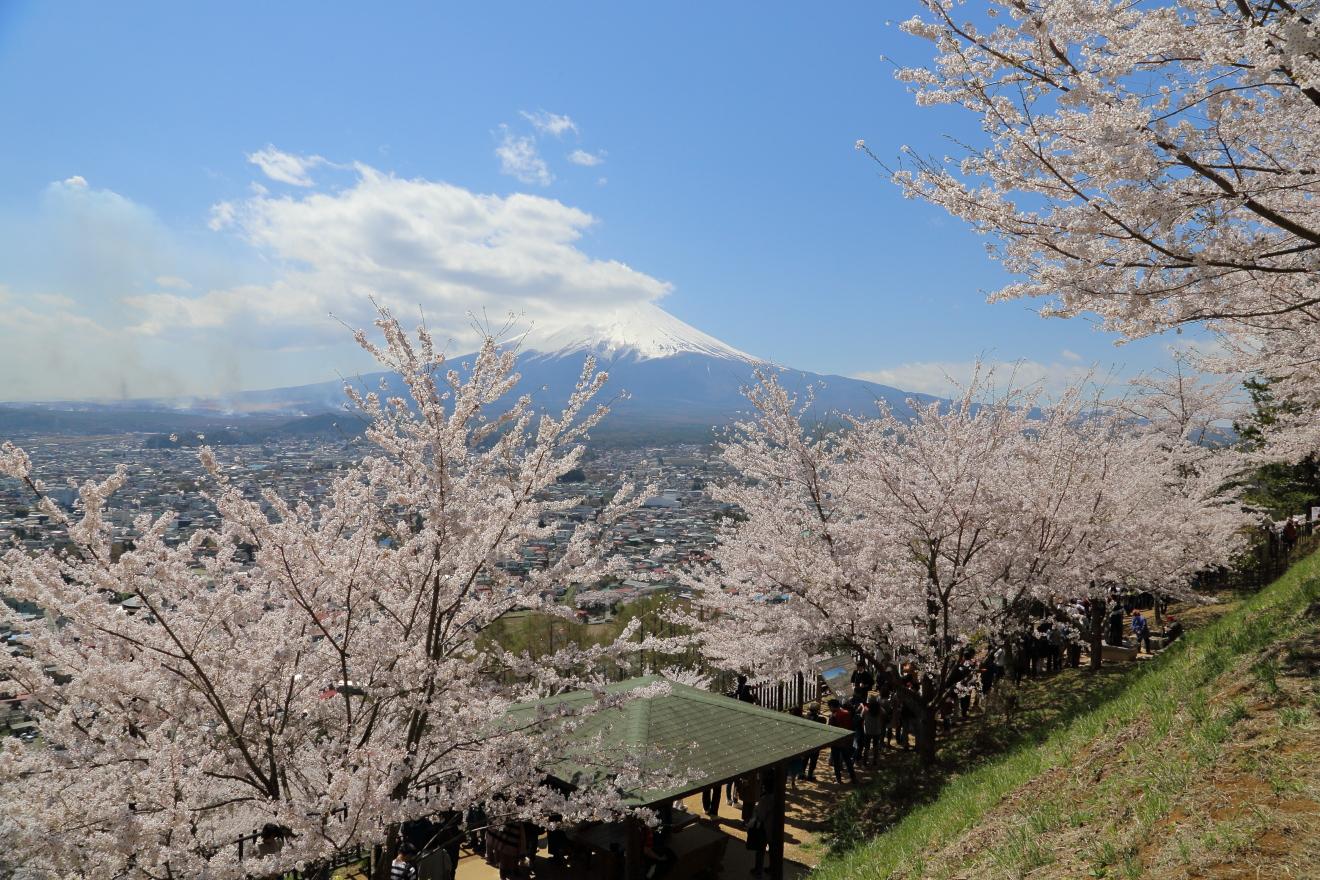 東屋上の散策路からの富士山