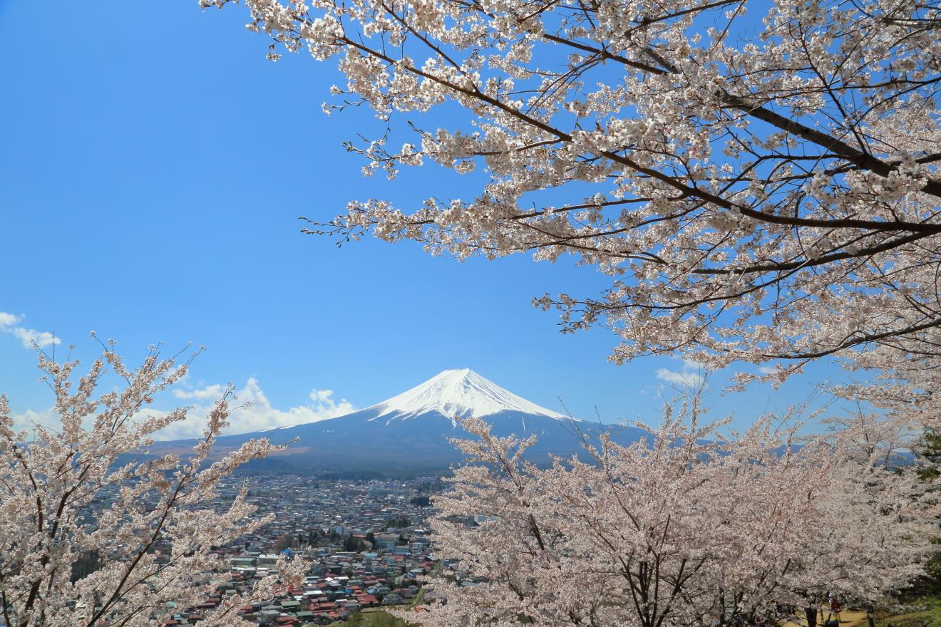 忠霊塔からの富士山