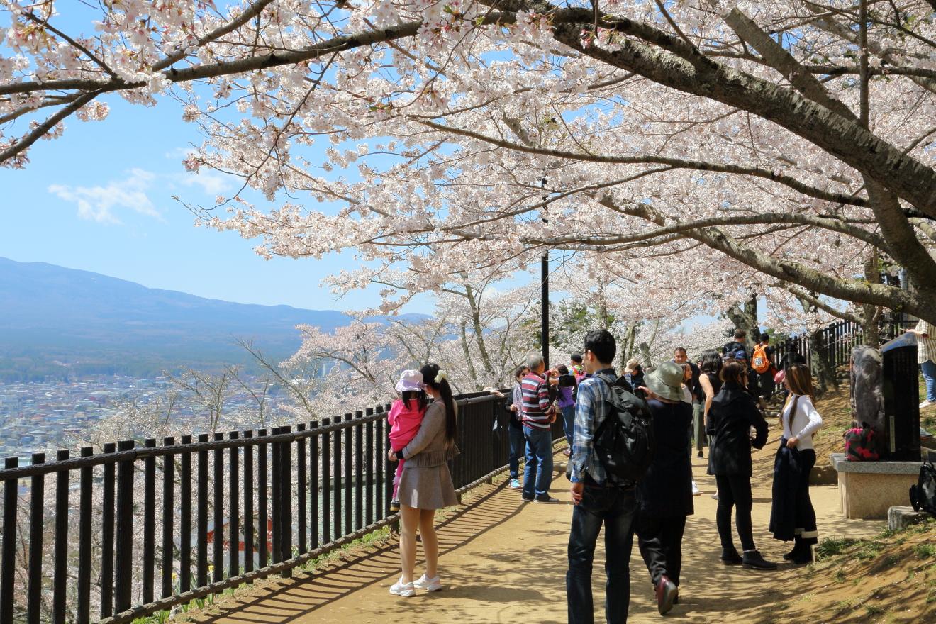 遊歩道からの富士山