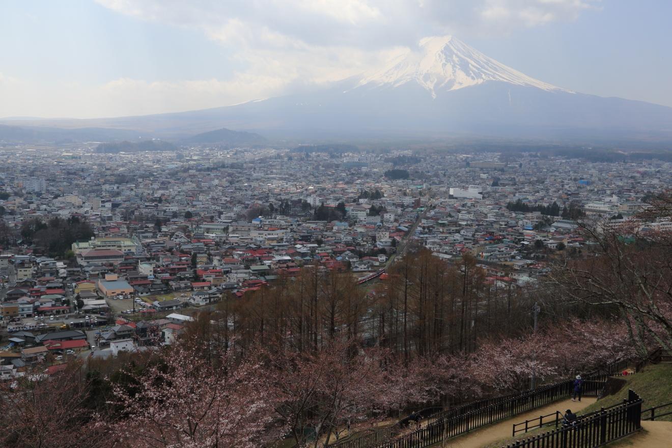 新倉山浅間公園からの富士吉田市