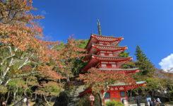 10月30日忠霊塔の紅葉