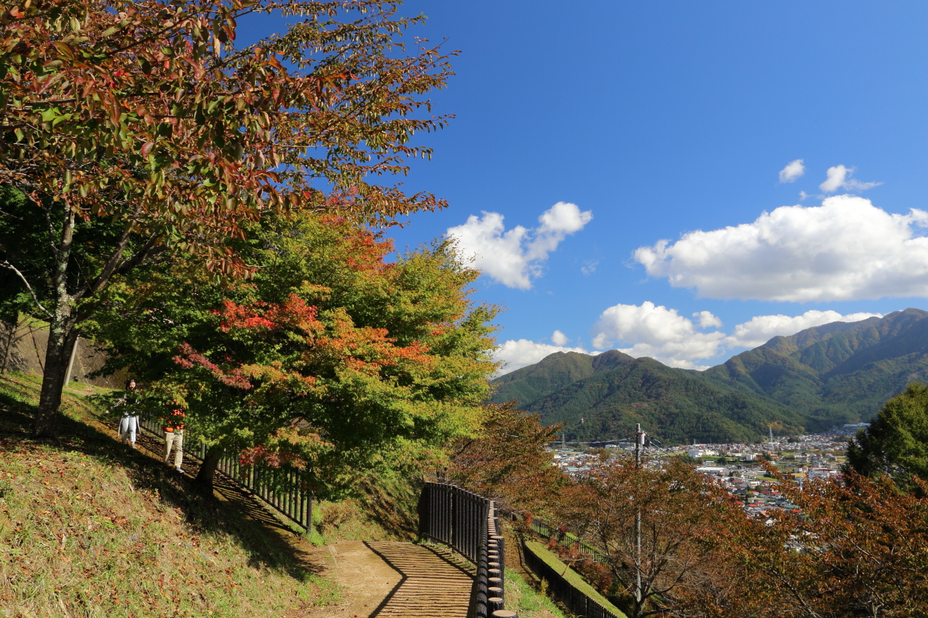 新倉山浅間公園遊歩道の紅葉