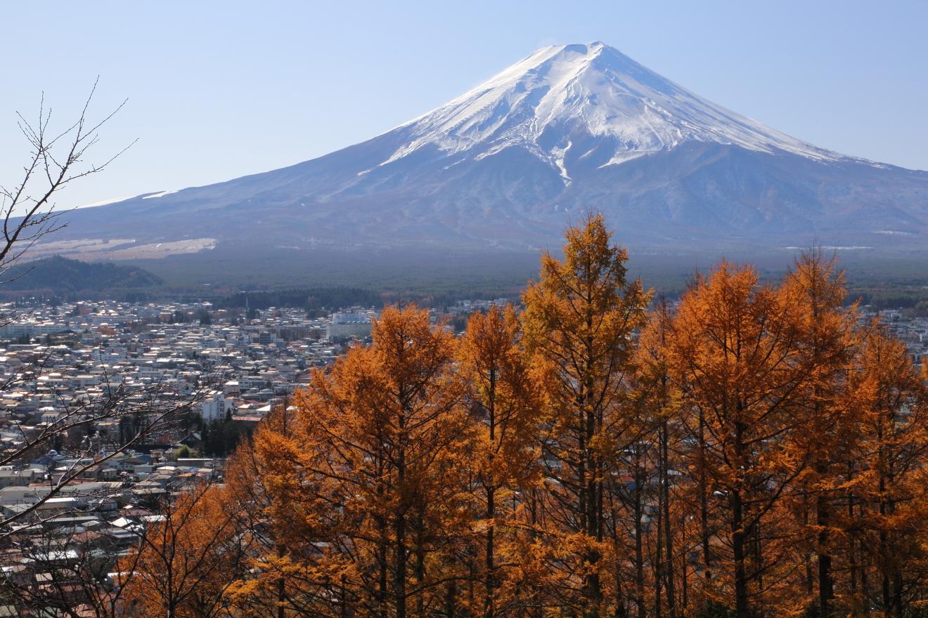 新倉山浅間公園遊歩道からの富士山