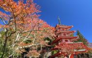 忠霊塔の紅葉