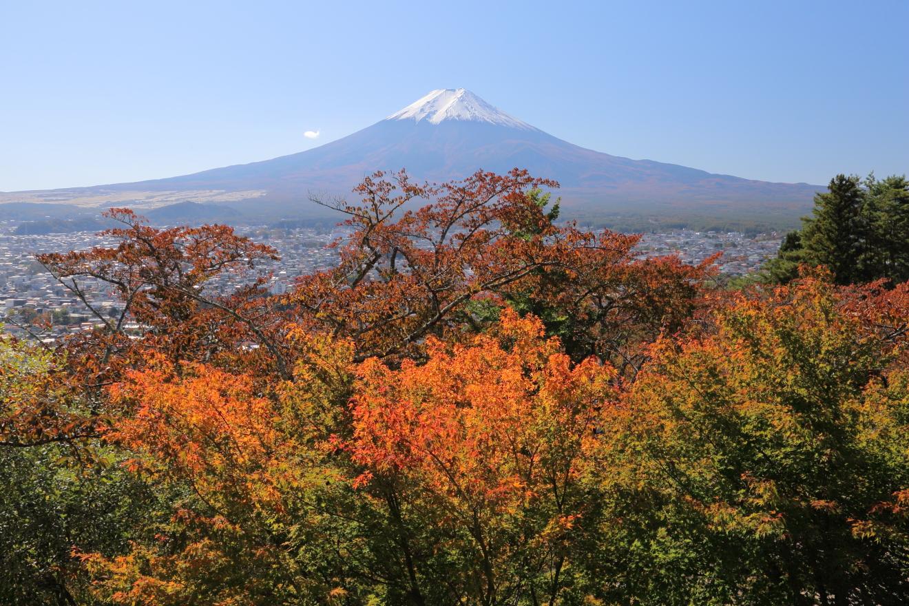 富士山と忠霊塔の紅葉