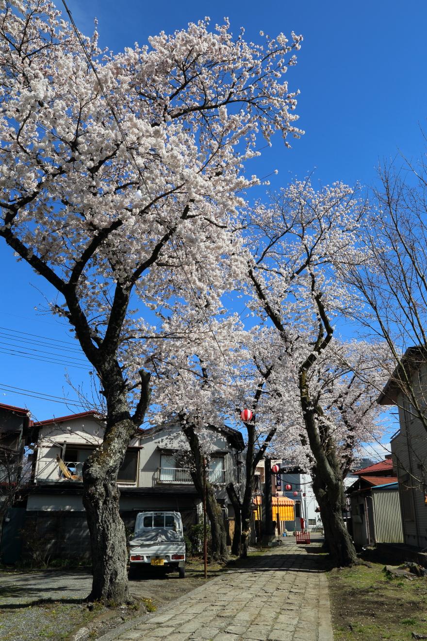 小室浅間神社の参道