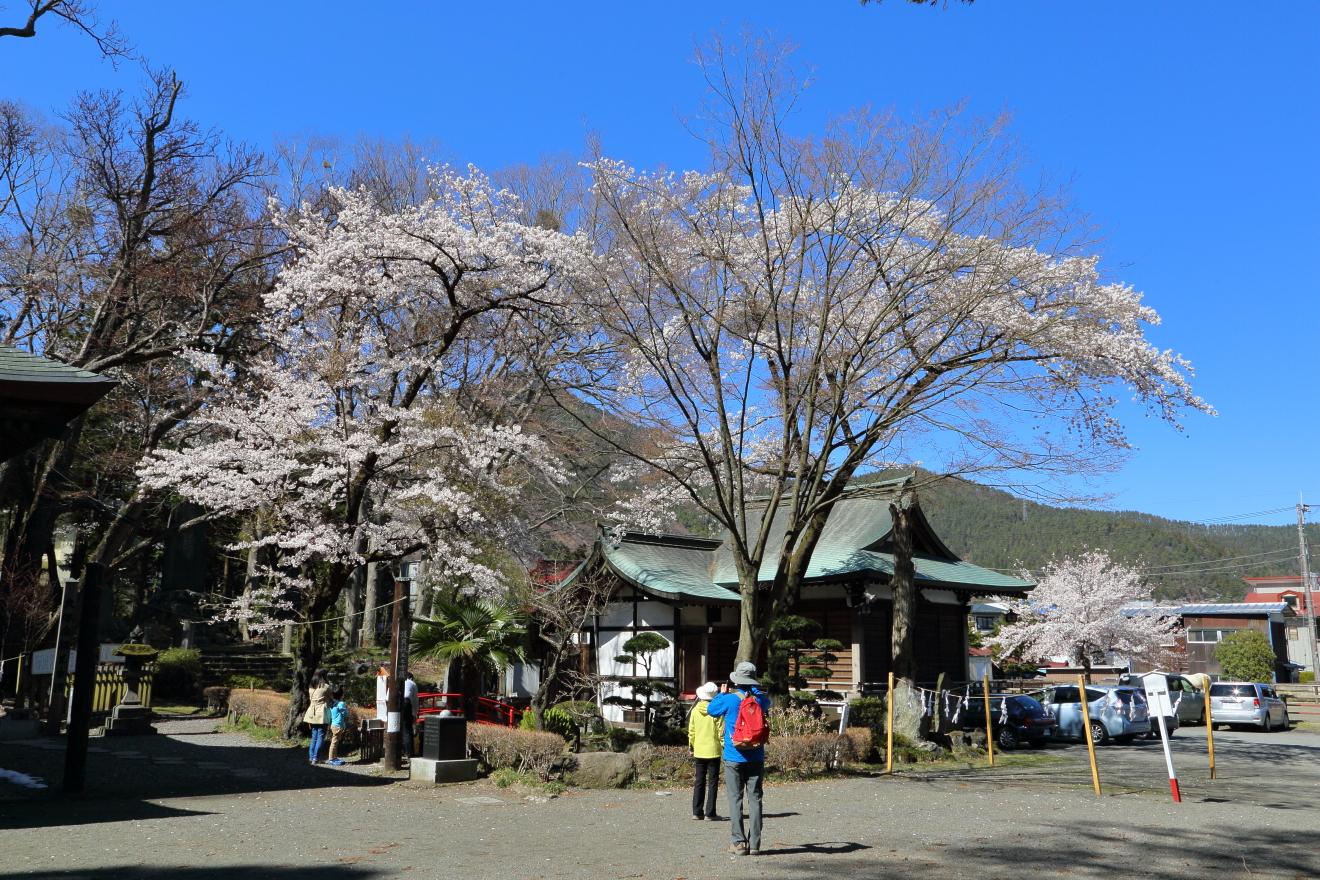 小室浅間神社境内の様子