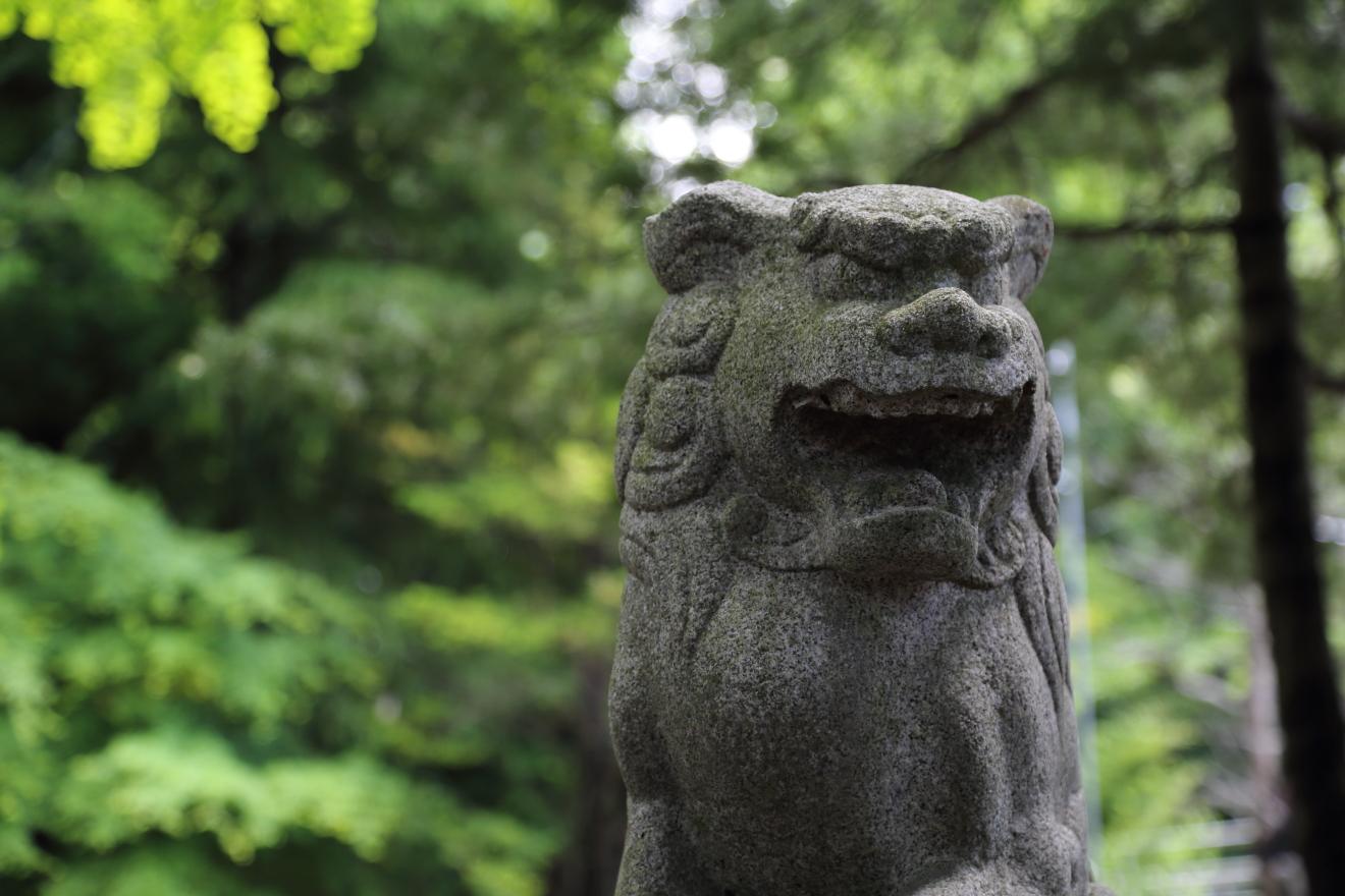 新倉富士浅間神社狛犬