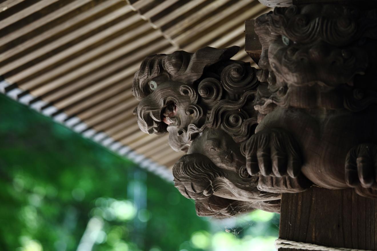 新倉富士浅間神社手水舎の獅子