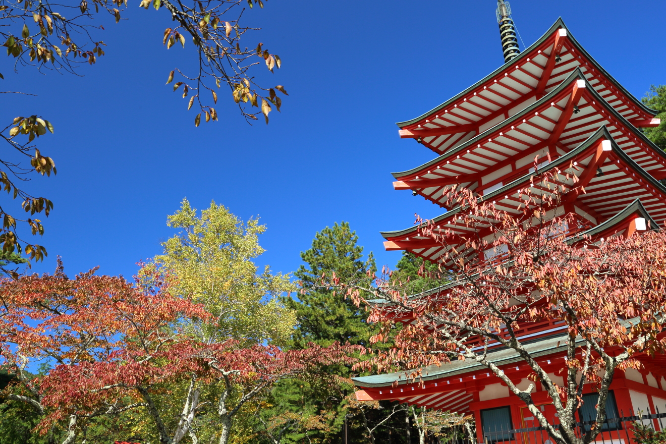 忠霊塔と紅葉の様子