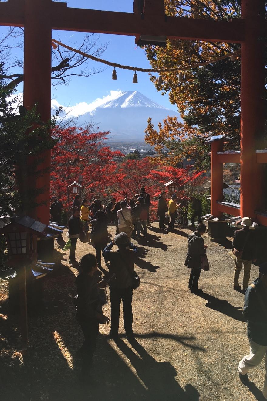 新倉富士浅間神社大鳥居からの富士山