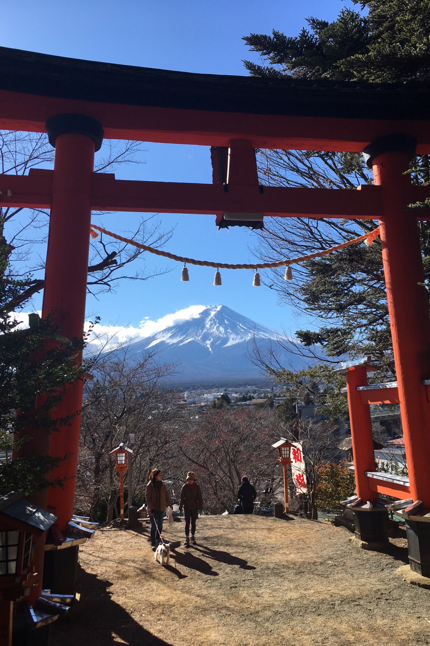 新倉富士浅間神社の大鳥居から見る富士山