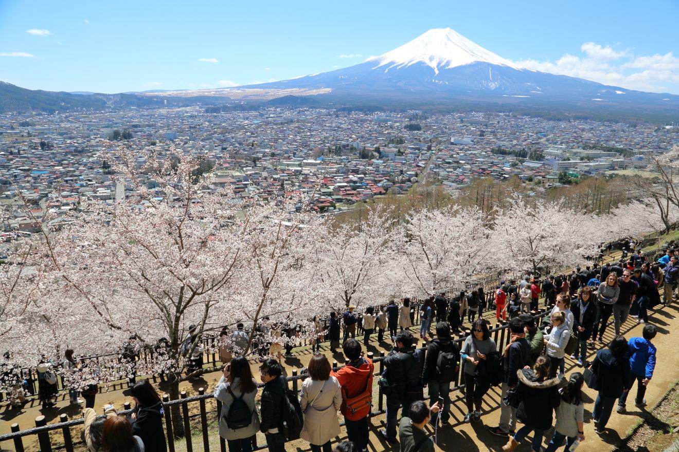 新倉山浅間公園の観光客