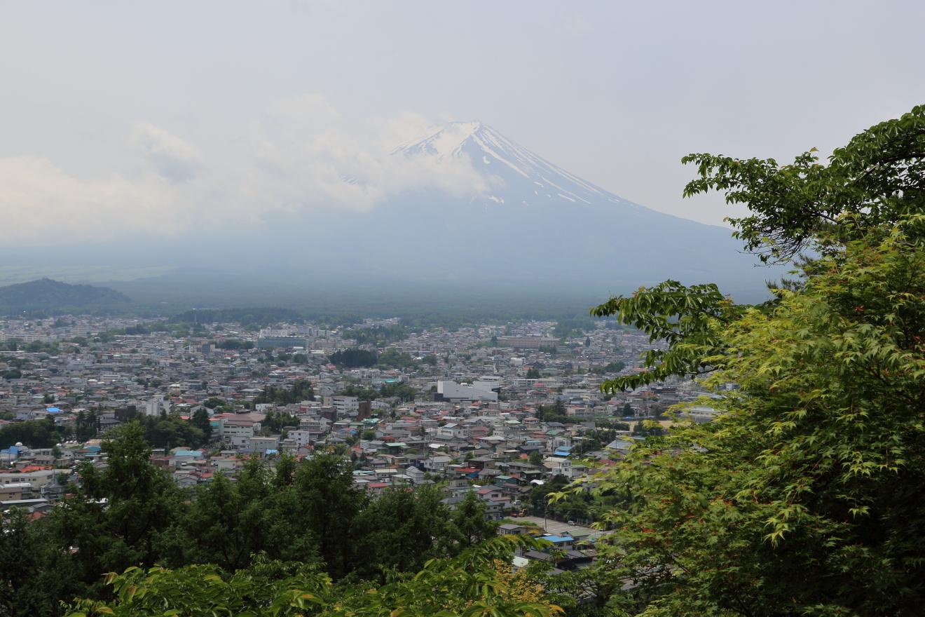 咲くや姫階段:富士山