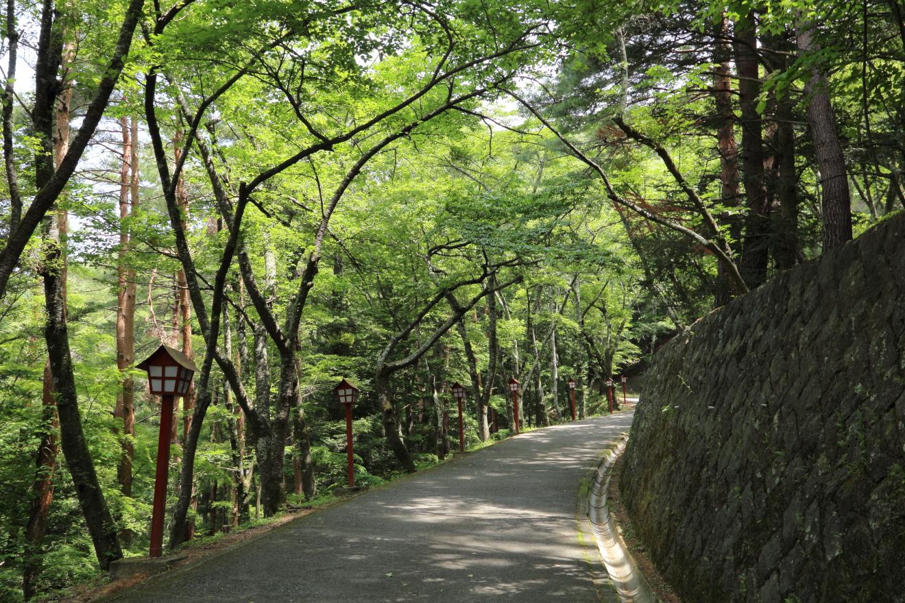 新倉山浅間公園:車道