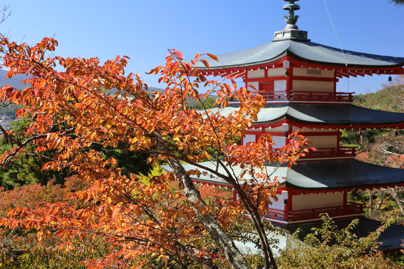 忠霊塔と色付いた桜