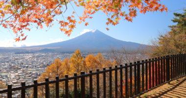 新倉山浅間公園:紅葉