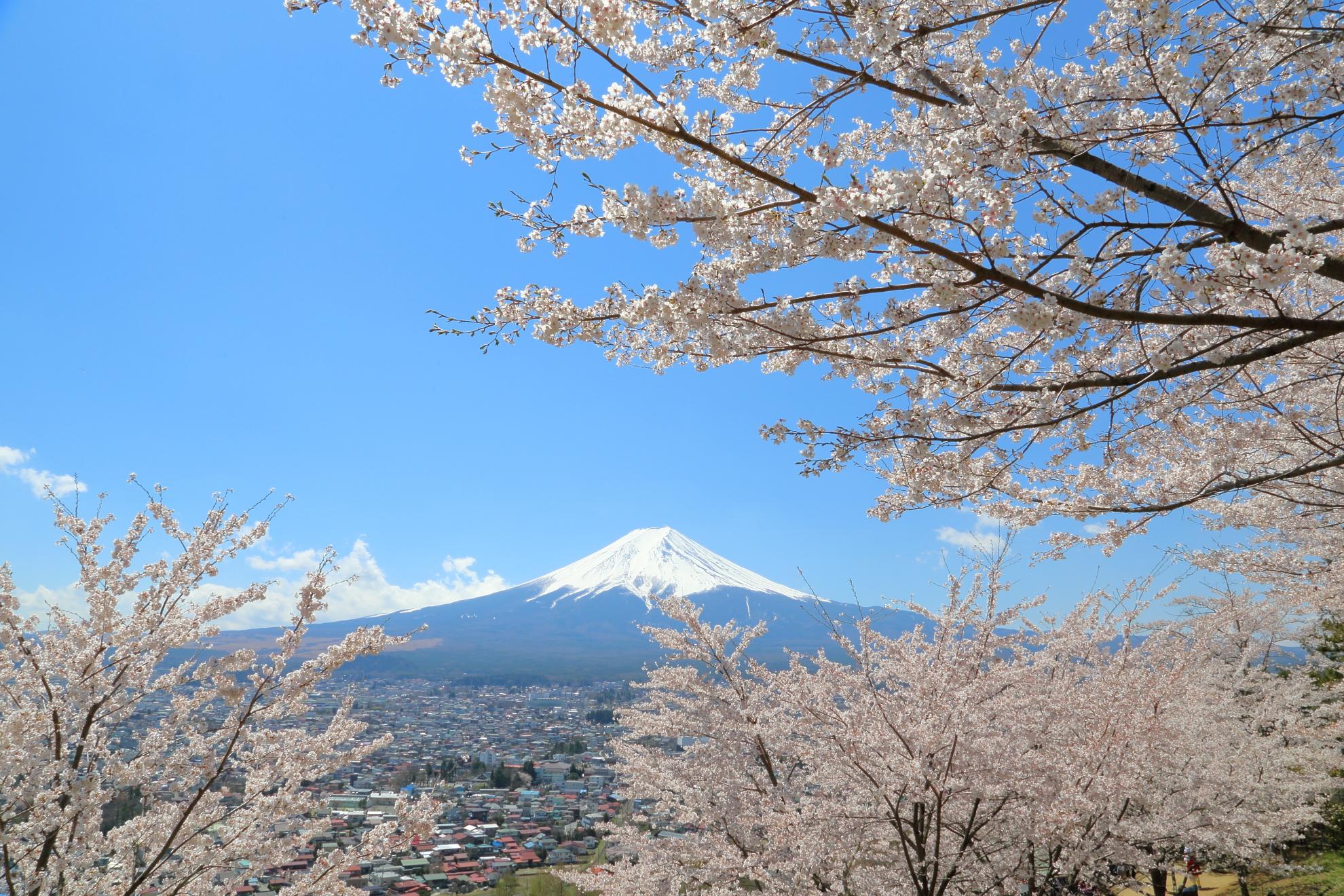 日本:Japan