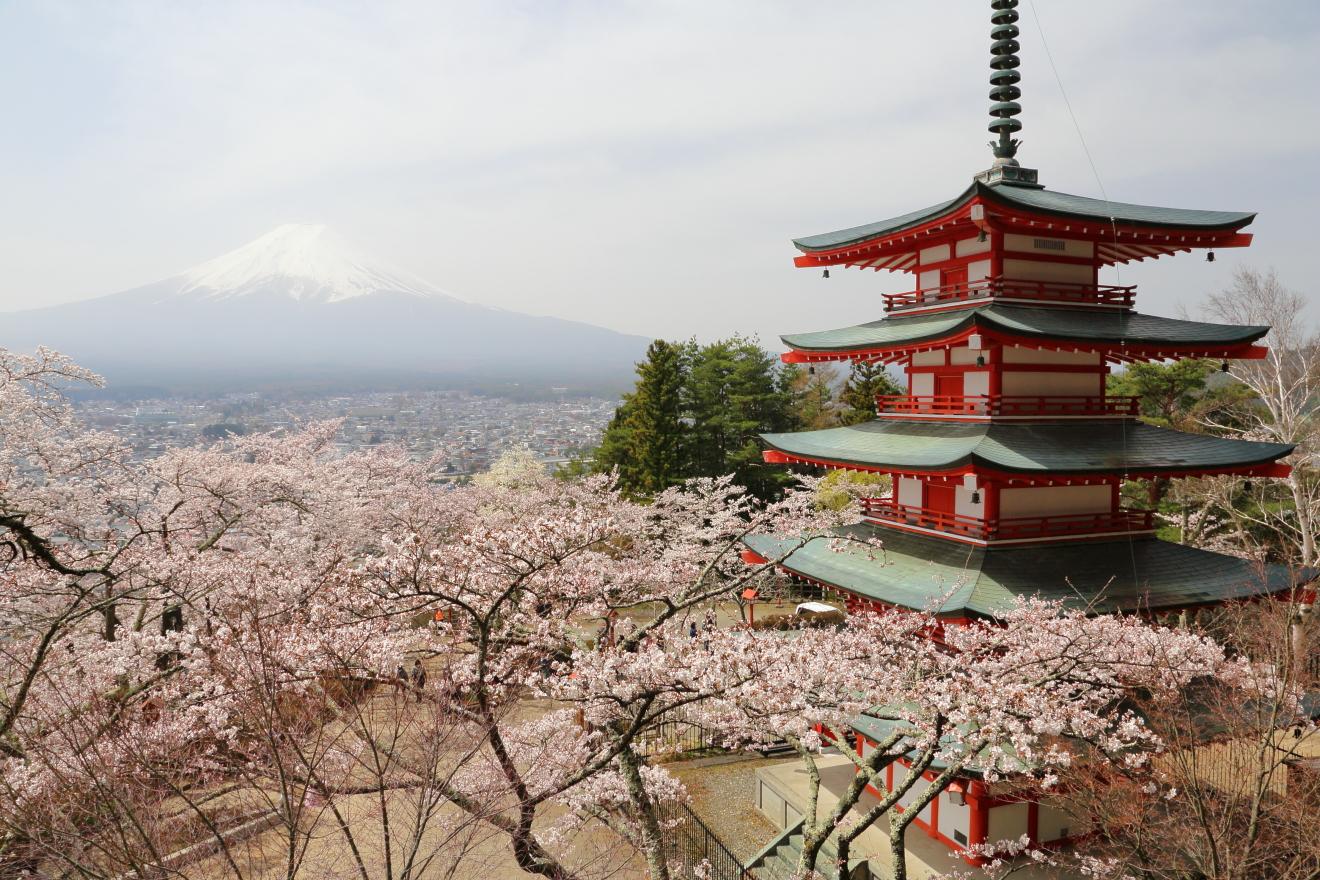 新倉山浅間公園:2021