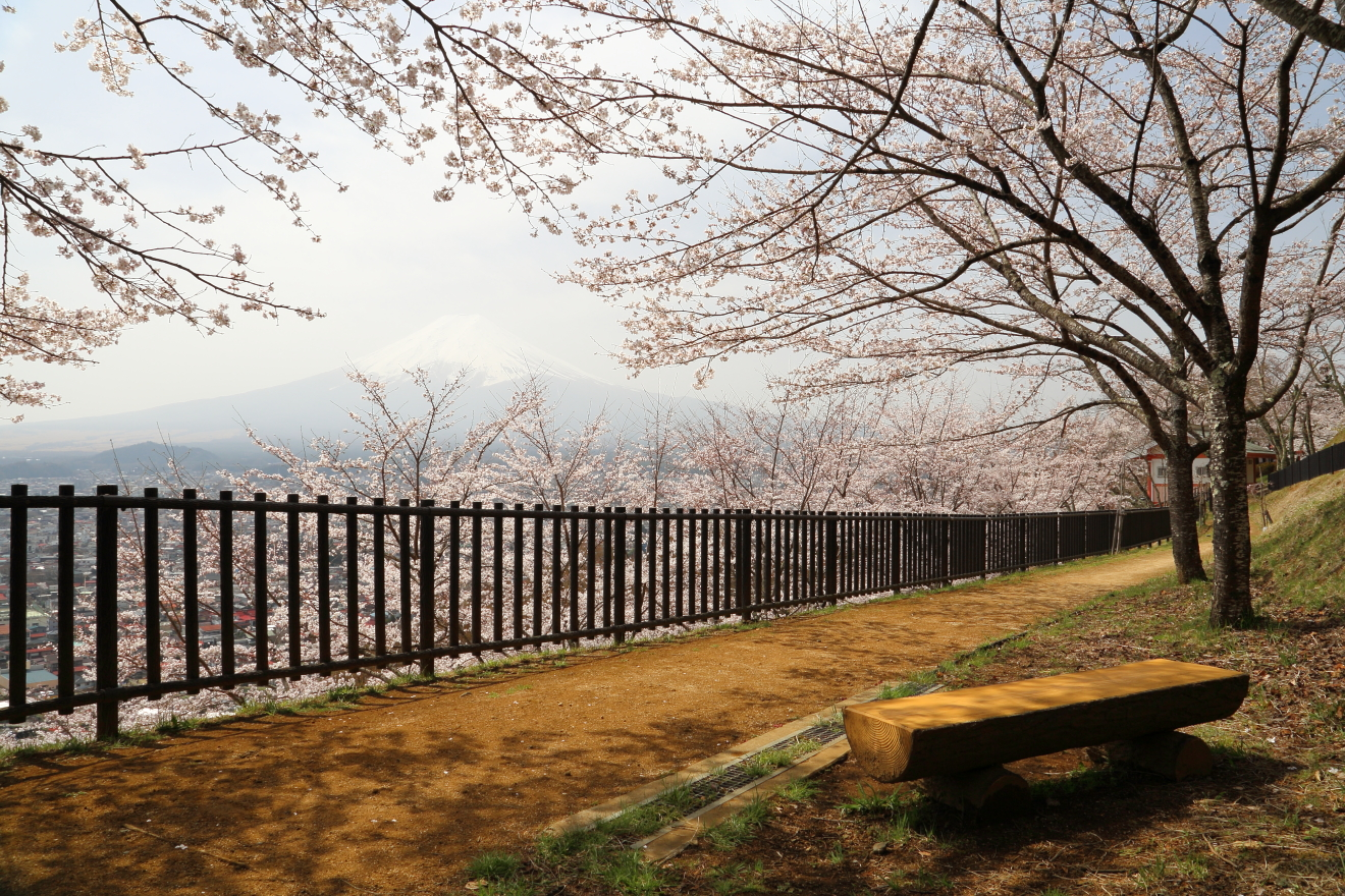 新倉山浅間公園:遊歩道